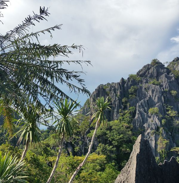 Bouwsteen Thailand: Going local in het Oosten