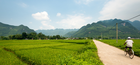 Bouwsteen Vietnam: Natuur en varen door Halong Bay