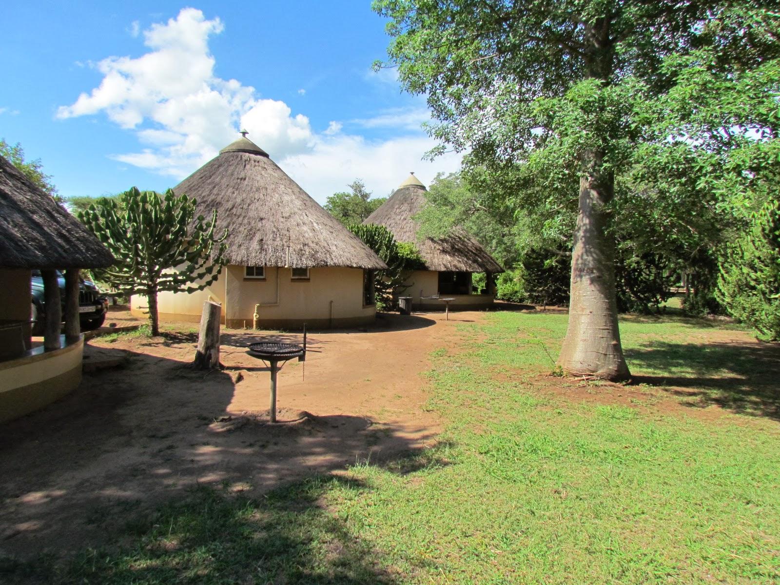 krugerpark, skukuza restcamp in krugerpark, zuid afrika van verrehet is meteen ook de grootste van alle 12 restcamps omdat het de meeste overnachtingsmogelijkheden en faciliteiten biedt, centraal gelegen is aan de oevers