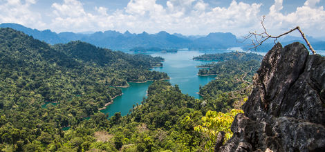 Thailand-Khao-Sok-jungle1_1_124113 Thailand