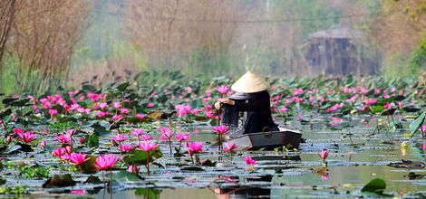 Rondreis Vietnam en Cambodja: Tempels, delta en historie