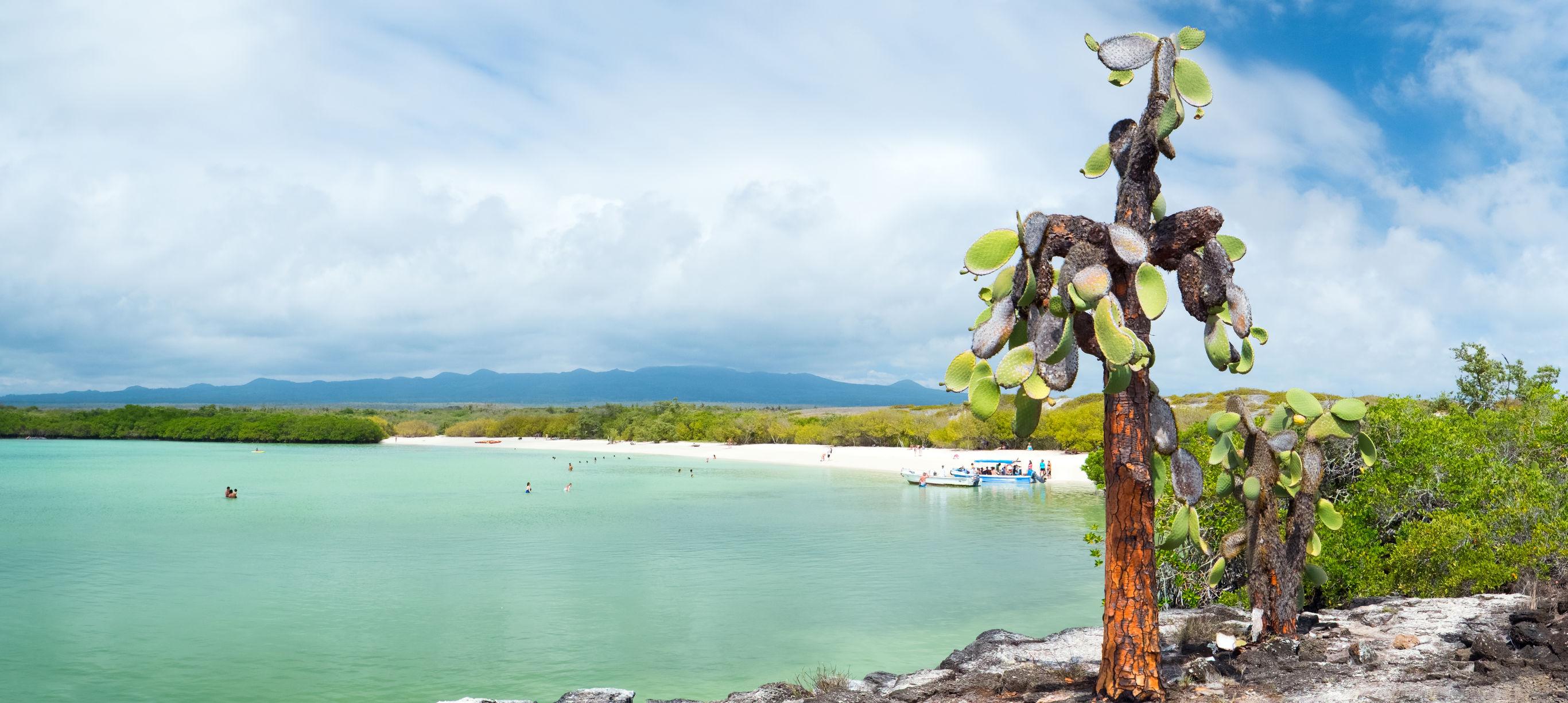 Bouwsteen Galapagos Cruise noordelijke eilanden