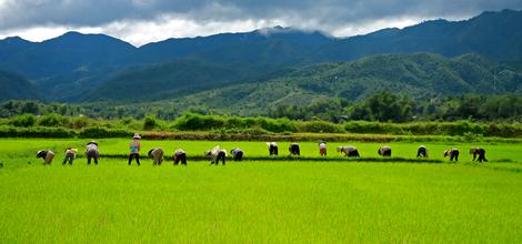 Rondreis Vietnam: Ontdek bijzonder Vietnam