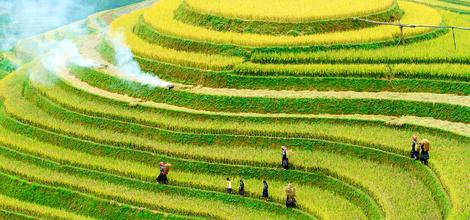 Rondreis Vietnam en Laos: Boeiend Vietnam en ongerept Laos