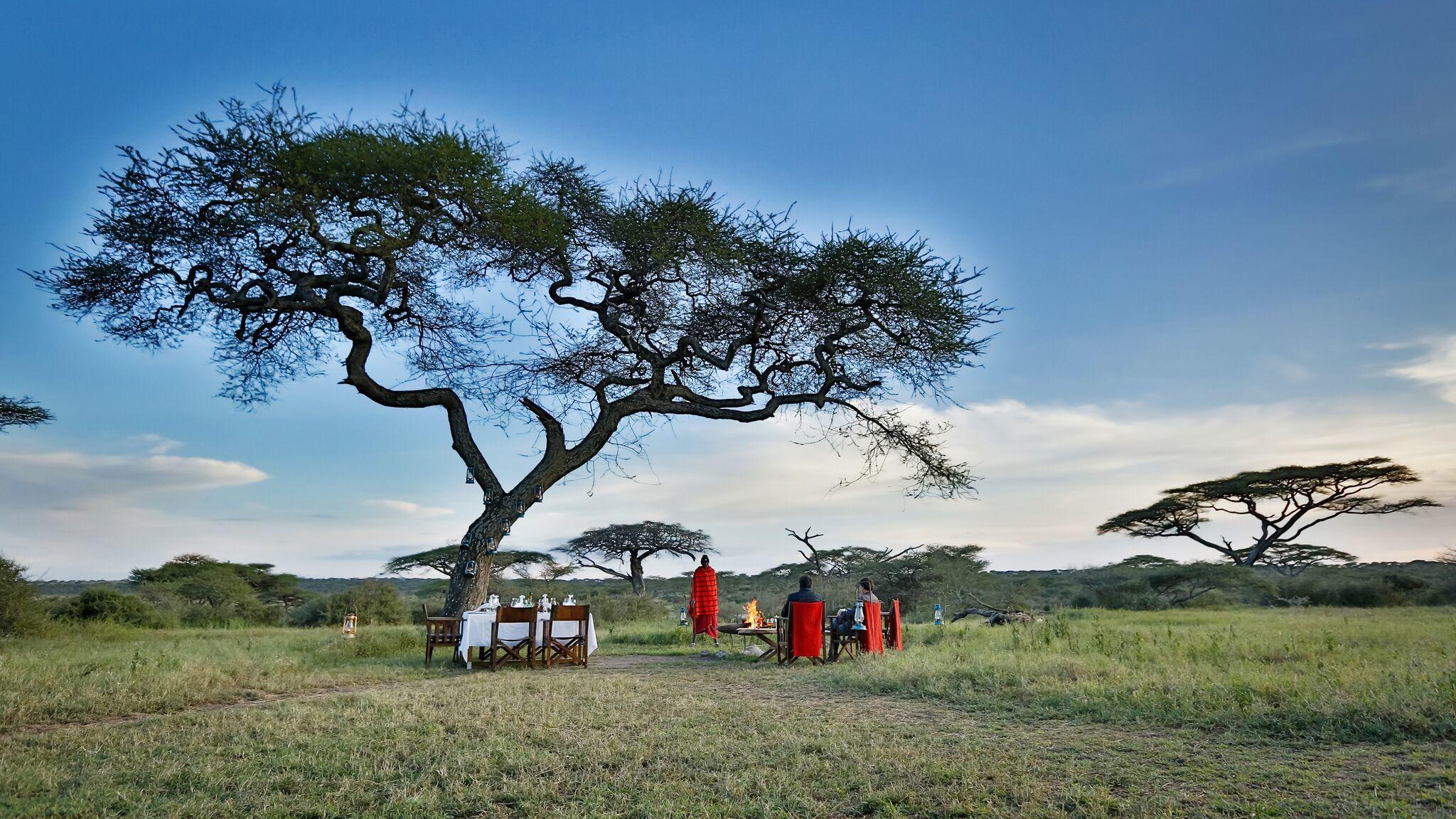 Sfeerimpressie Rondreis Tanzania: Safari Serengeti Serenade