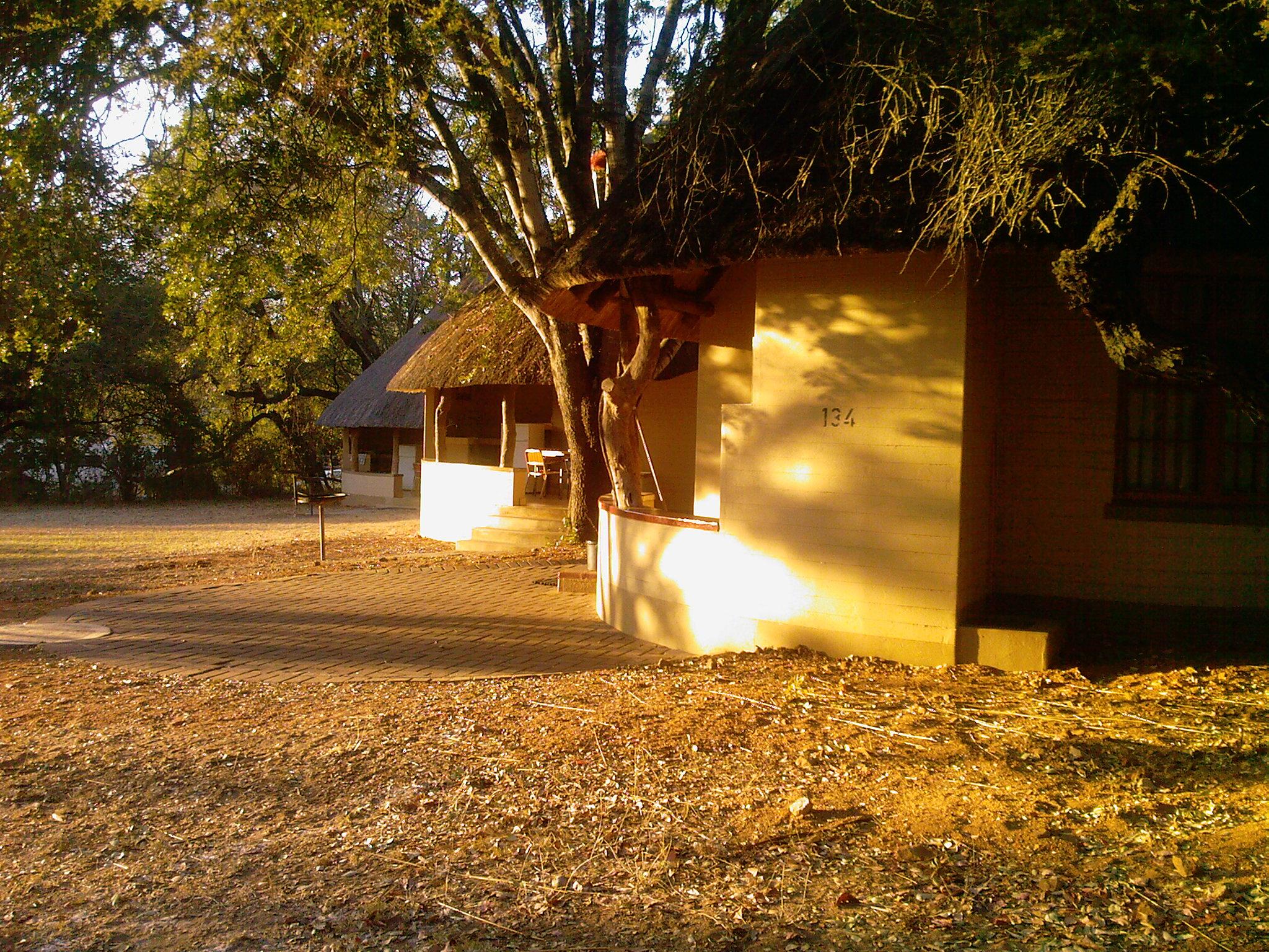 krugerpark, olifants restcamp in krugerpark, zuid afrika van verrekrugerpark, olifants restcamp