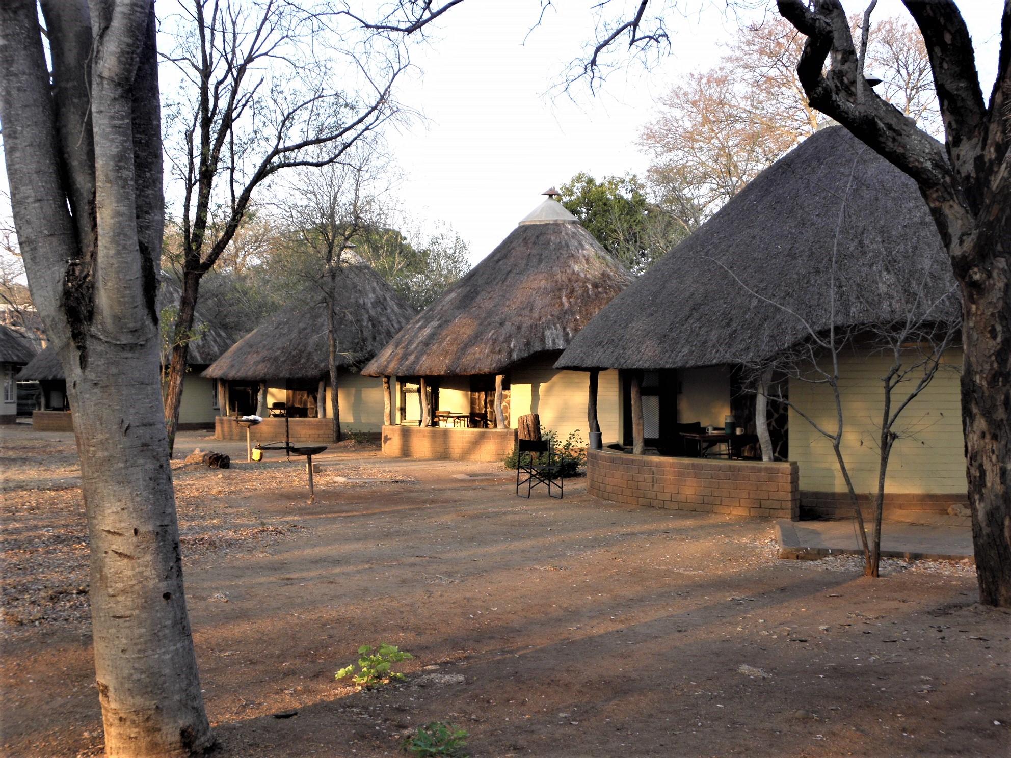 krugerpark, satara restcamp in krugerpark, zuid afrika van verreOvernachten In Het Krugerpark.htm #14