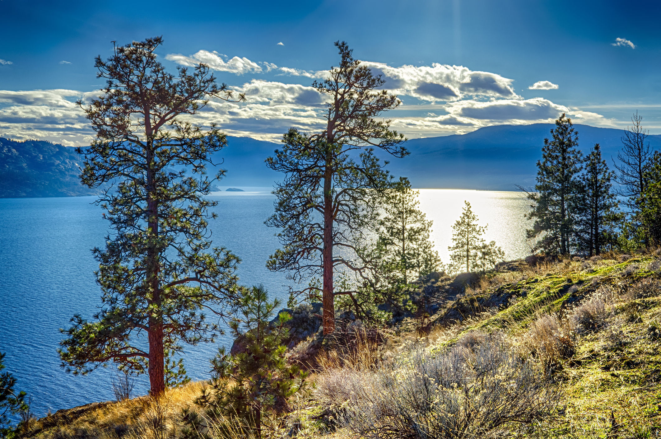Canada-Okanagan-Lake-1_3_503375 Canada