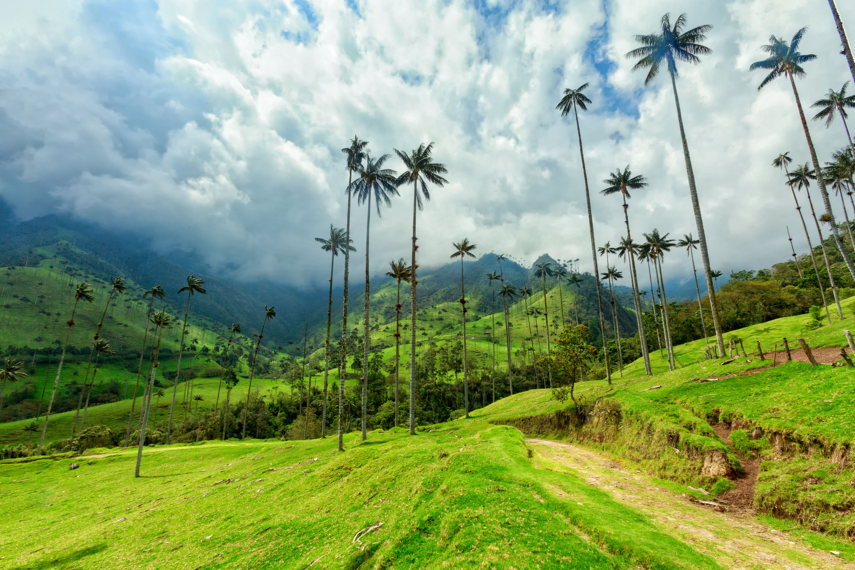 Sfeerimpressie Autorondreis Colombia: Selfdrive Colombia