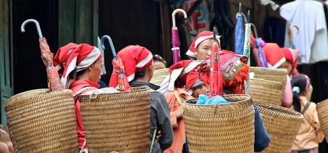 Rondreis Vietnam: Noord-Vietnam, bergstammen en natuur