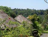 Ubud, The Payogan Resort
