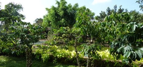 Bouwsteen Vietnam: Volg de Ho Chi Minh Trail
