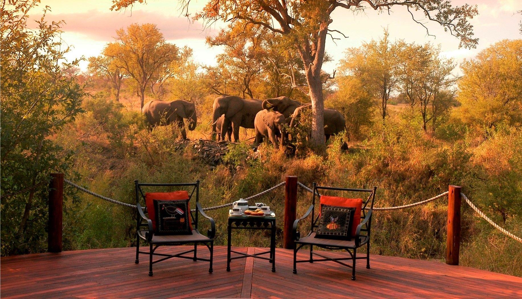 Sfeerimpressie Autorondreis Zuid-Afrika: Country House en Safari Lodge