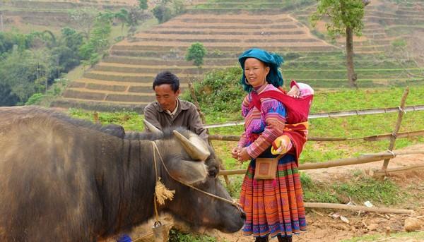 Op Reisbestemming Azie is alles over vietnam te vinden: waaronder  en specifiek Bouwsteen Vietnam: Wandelen naar bergstamdorpen