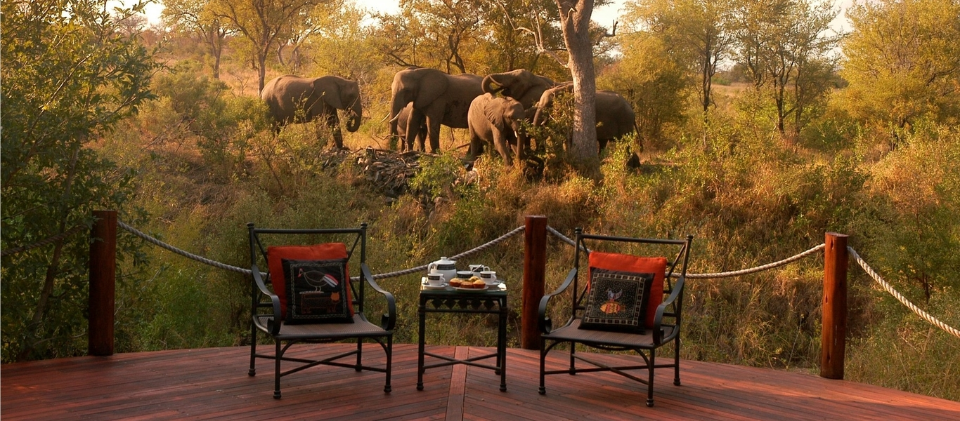 rondreis zuid afrika, country house \u0026 safari lodge bij van verreRondreis Safari Afrika.htm #10