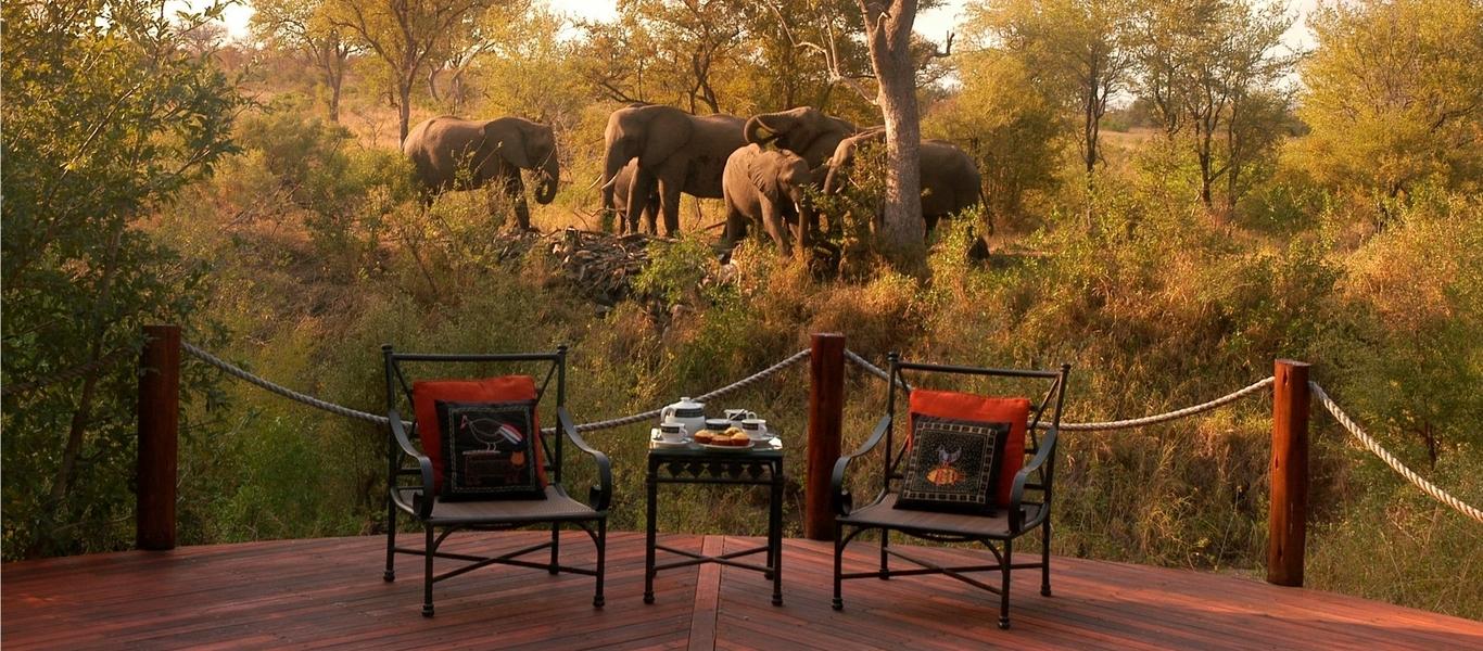 rondreis zuid afrika, country house \u0026 safari lodge bij van verreOvernachten In Het Krugerpark.htm #15