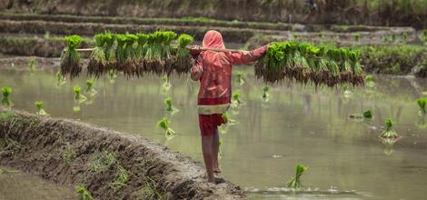 Rondreis Laos: Van de gebaande paden