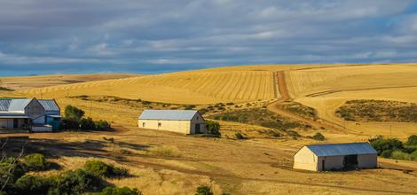Rondreis Zuid-Afrika: Dwars door Vrijstaat